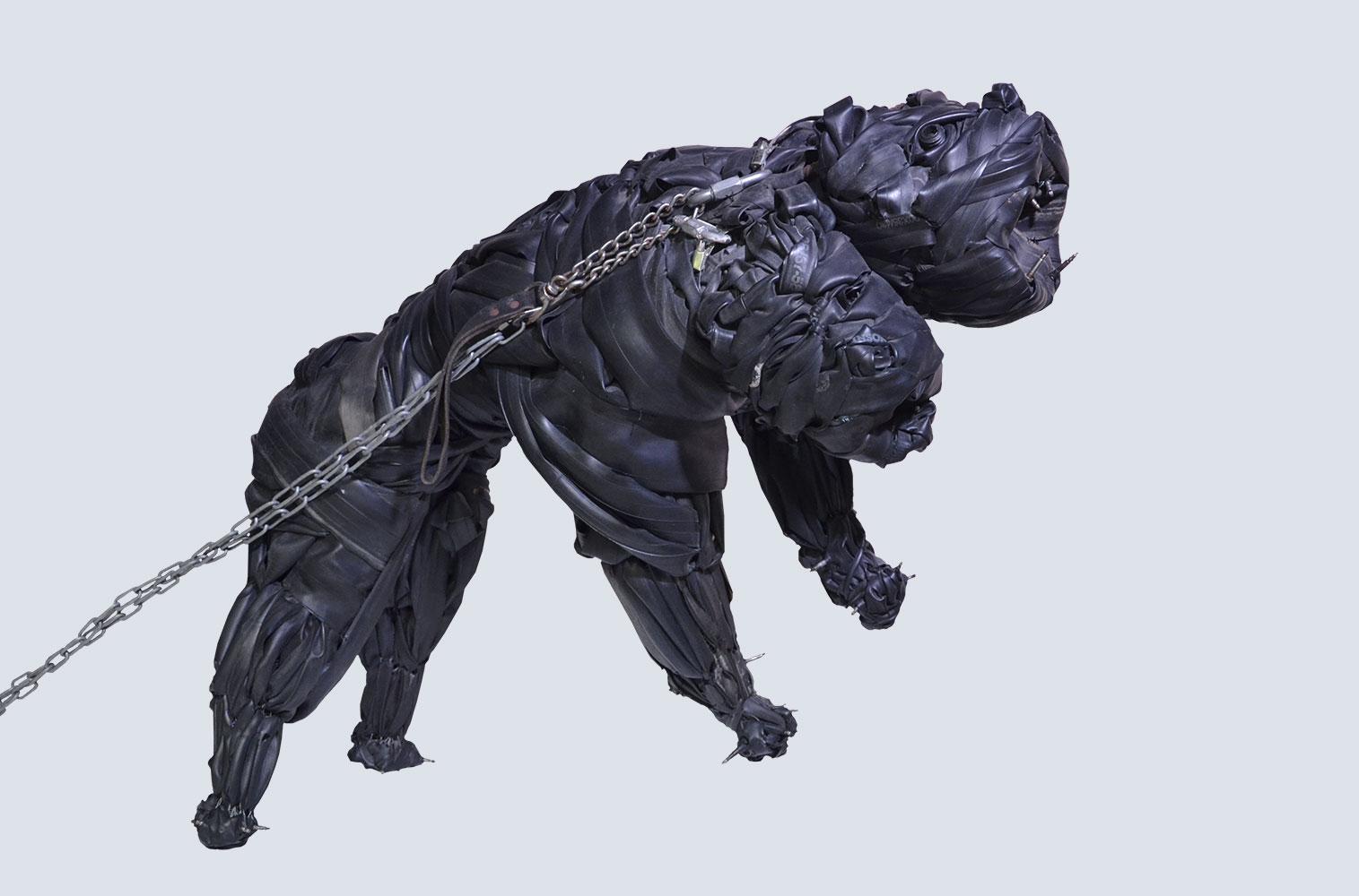 2-headed dog